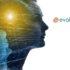 """""""إيفولوكير تكنولوجيز"""" تسلط الضوء علي التقنية الجديدة لحلول HopitalWeb"""